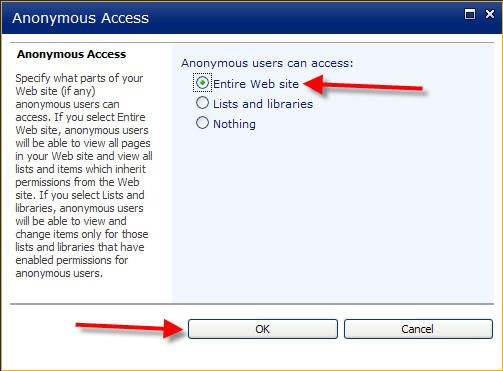 Anonymous Access Set Up Step 8